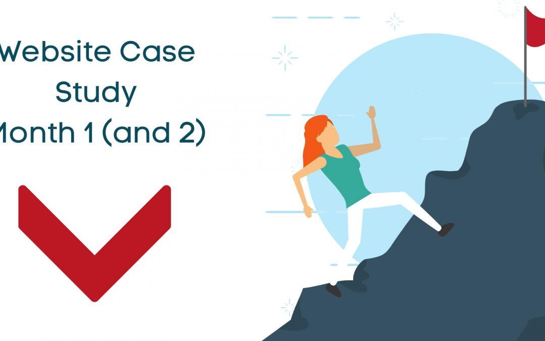Get More Traffic – Website Case Study Month #2